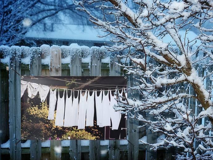 Tuinposter in winter